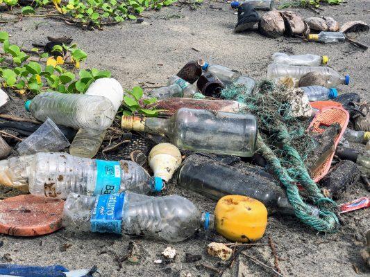 impact environnemental action humaine